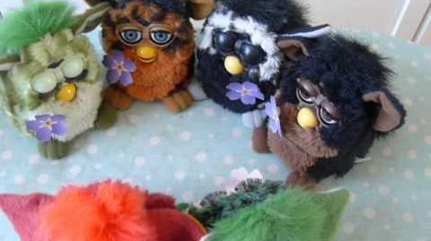 Furby Bo, Dah, (.), (.),Toh-loo, and Dah-loh-lah-0