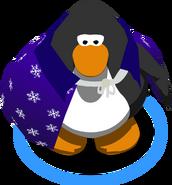 Magician's Cloak112233