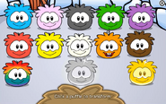 Puffle party 2018 transformations