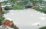 Forest Location 002