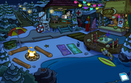 Operation Puffle Cove
