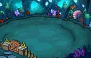 Undersea Location Backyard