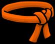 Orange Ninja Belt icon-0