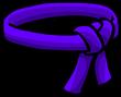 Purple Ninja Belt icon-0