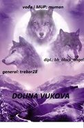Eyes of the wolf11