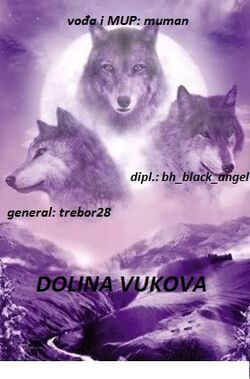 Eyes of the wolf11.jpg