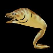 Moray icon