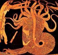 Hydra.6.