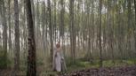 5x08 forêt calédonienne Emma Swan arrivée.png