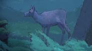107 vom Jäger getötete Hirschkuh
