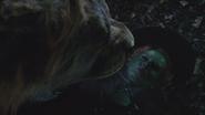 6x18 Lion Poltron dos poitrine Zelena Méchante Sorcière de l'Ouest proie danger