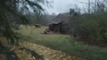 5x19 vue maison chaumière du forestier Zelena route de briques jaunes.png