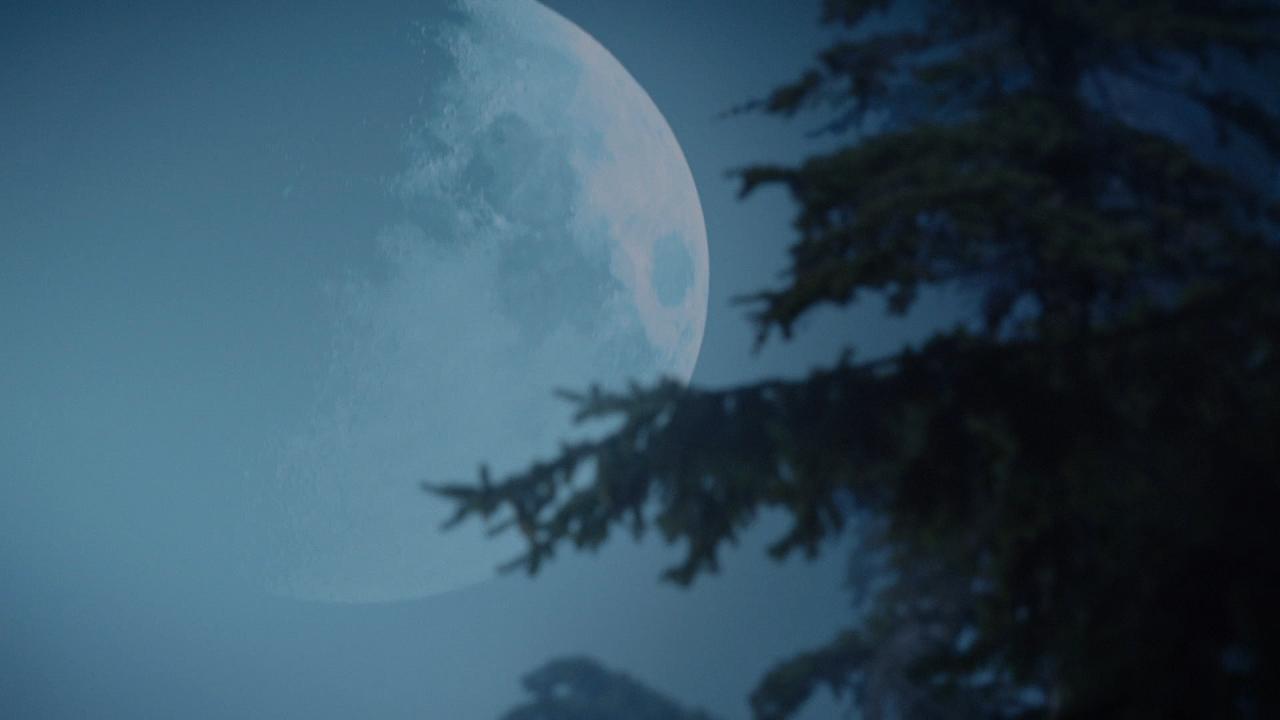 Fête de la pleine lune