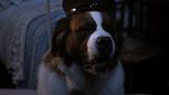 2x21 Nana chien saint-bernard chapeau casquette.png
