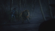 6x18 Stanum Bûcheron Homme de Fer-Blanc Lion Poltron apeuré pleurs Zelena Méchante Sorcière de l'Ouest dos