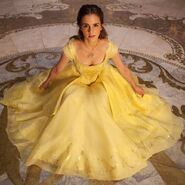 The-beauty-and-the-beast-belle-s-dress-1-