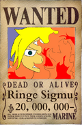 Wanted Ringe.PNG