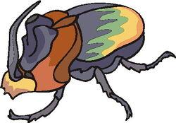 Forma Escarabajo Completo.jpg
