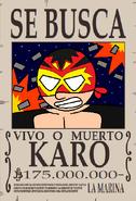 Karo Wanted