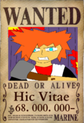Hic Wanted 2.png