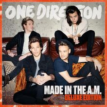 Made in the A.M. Deluxe Version Cover.jpg
