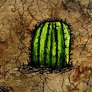 Barrel Cactus.jpg