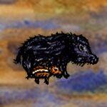 Wild Boar with Piglet.jpg