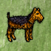 Airedale.png