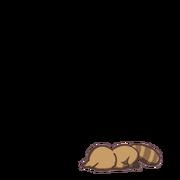 Raccoon 00 04.png
