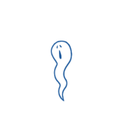 Ghost 00 04.png
