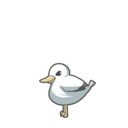 Seagull 00 00.png