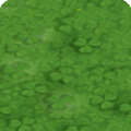Clover shop icon.png