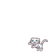 Cat 00 01.png