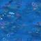 Ocean Dive shop icon.png