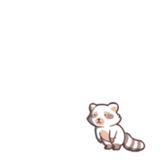 Raccoon 02 00.png
