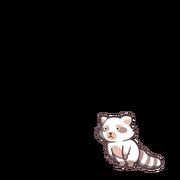 Raccoon 02 00.png
