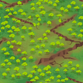 Field scarredland.png