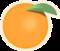 Orange Icon Big.png