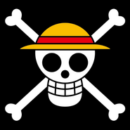 Bandera Barret de Palla