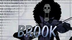 Brook opening 11.jpg