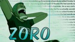Zoro opening 11.jpg