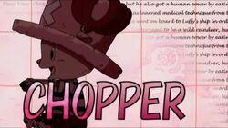 Chopper opening 11.jpg