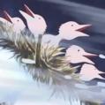 Snow Birds Portrait