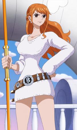 Nami tras el salto temporal en el anime