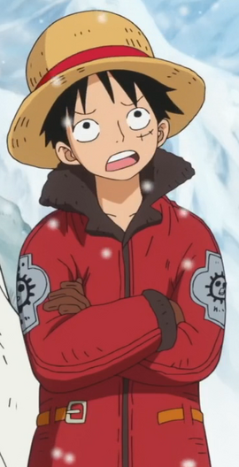 Tenue vestimentaire de Luffy PH .png