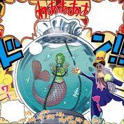 Keimi in the aquarium.jpg