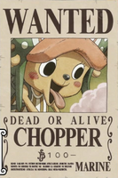 Chopper seconda taglia