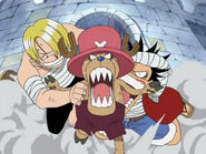 Sanji und Luffy klammern sich an Chopper