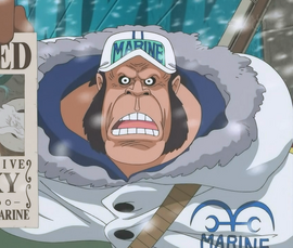 Gorilla in the anime