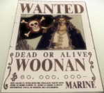 Woonan Bounty.png